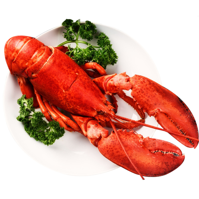 Cooked Frozen Lobster